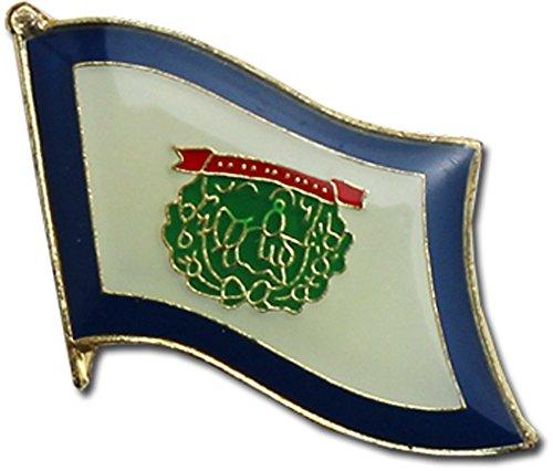 Virginia Flag Lapel Pin - 7