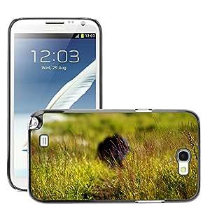 Super Stellar Slim PC Hard Case Cover Skin Armor Shell Protection // M00052101 aero summer macro meadow // Samsung Galaxy Note 2 N7100