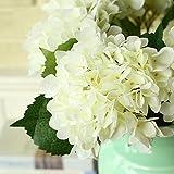 Kaimao 5 Pcs Artificial Hydrangea Flower Big Heads Fake Flower Bounquet for Wedding Garden Decor Birthday Christmas Gift(White)