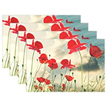 Aideess Poppy Red Placemats Set of 6 Washable Table Mat for Kitchen Dining Table 12 X 18 Inches Place Mats