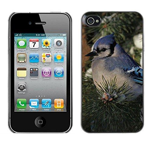 Premio Sottile Slim Cassa Custodia Case Cover Shell // F00002345 de plein air // Apple iPhone 4 4S 4G