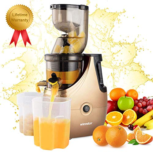 Masticating Juicer Machines, Slendor Cold Press Slow Juicer Juice Extractor with 3 inch Chute Easy to Clean, Quiet Motor, Reverse Function for Fruits and Vegetables, High Yield, BPA-Free with Brush