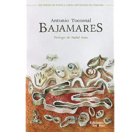 Bajamares: Amazon.es: Tocornal Blanco, Antonio: Libros