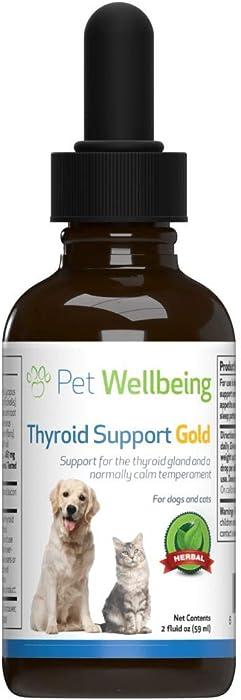 Top 7 Feline Thyroid Food