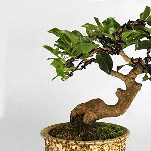 Jaimenalin Bonsai Wire Set avec Flower Pot Hole Mesh Pad, Copper Bonsai Training Wire pour Bonsai Tree Kit 20 Plastic Mesh Mat Bronze