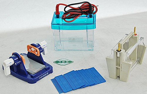 DYCZ-24DN Lab Mini Modular Dual Vertical Gel Electrophoresis Cell System 82 x 82 mm For SDS – PAGE Protein Electrophoresis