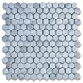 Calacatta Gold Italian Calcutta Marble Hexagon Mosaic Tile 1 inch Honed