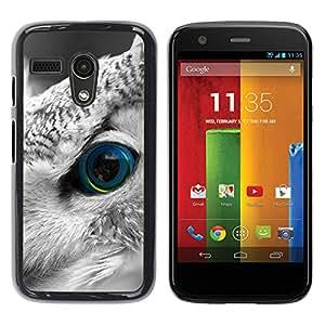 Paccase / SLIM PC / Aliminium Casa Carcasa Funda Case Cover para - Owl Smart Bird Feather Eye Looking - Motorola Moto G 1 1ST Gen I X1032