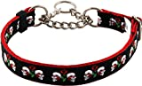 Country Brook Design Skull and Roses on Red Half Check Grosgrain Ribbon Dog Collar - Large