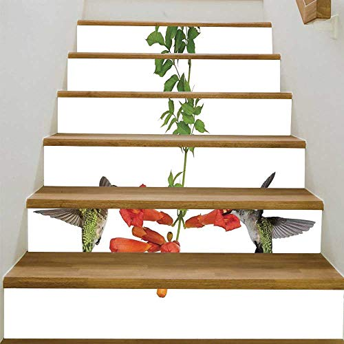 - YOLIYANA Hummingbirds Decor Floor Tiles Wall Sticke,Two Hummingbirds Sip Nectar from a Trumpet Vine Blossoms Summertime for Stairs Decal,39.3