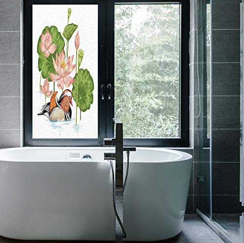 - YOLIYANA Frosted Window Film Stained Glass Window Film,Duck,Work Well in The Bathroom,Baby Mandarin Duckling in Pond with Lotus Lily,24''x48''