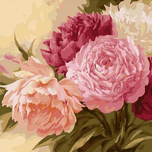 Adarl DIY Oil Painting Paint By Number Kit Image Drawing On Canvas By Hand Coloring Arts Crafts & Sewing NEW Pink Peony (Peonies By Number Paint)