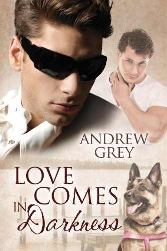Love Comes in Darkness (Senses Series Book 2) by [Grey, Andrew]