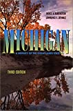 Michigan : History of a Great Lakes State, Rubenstein, Bruce A. and Ziewacz, Lawrence E., 0882959670