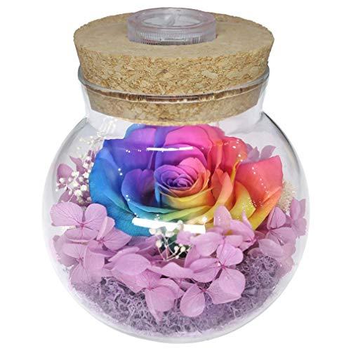 Dakotan Handmade Forever Flower, Preserved Eternal Real Rose...