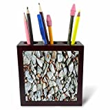 3dRose TDSwhite – Rock Photos - Rocks Acorns - 5 inch Tile Pen Holder (ph_281926_1)