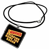 3dRose Dooni Designs Survive Sayings - I Survived Bringing Home The Bacon Survial Pride And Humor Design - Necklace With Rectangle Pendant (ncl_117813_1)