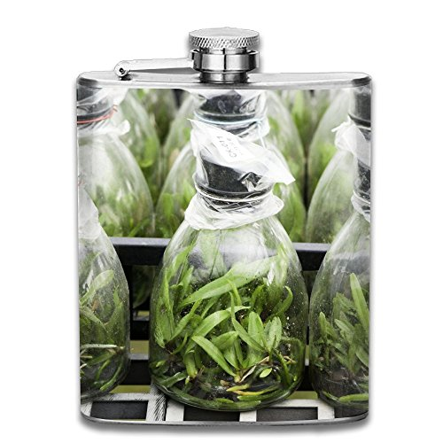 SmallHan Orchid Tissue Culture Of Cattleya Good Quality 304 Stainless Steel Flask ()
