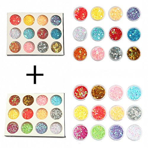 DIY 12 Colors 2 Sets 24 Jars of Flower & Star Iridescent Glitter Sequins Spangle for Nail Art Tip Deco Crafts Project