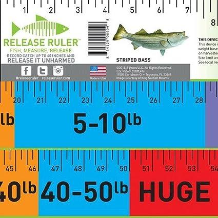 Release Ruler Striped Bass