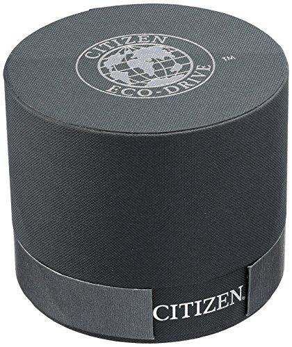 Citizen Eco Drive Mujer EM0382 86d círculo de Time Reloj
