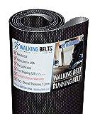 WALKINGBELTS Walking Belts LLC - Vision Treadmill Running Belt Model T9200