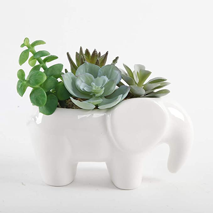 1pack Natures Mark 6 H Artificial Succulents in A White Ceramic Elephant Planter