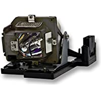 FI Lamps BL-FP180D/DE.5811116.037.S/DE.5811116037-S Replacement Projector Lamp with Housing for Optoma DS31/DS317
