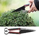 Gravidus Boxwood Scissors with Carbon Steel Blades