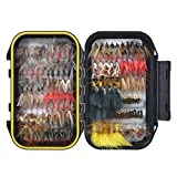 FishingSir Bass Trout Fly Fishing Flies - Dry Flies, Wet Flies, Nymph, Streamer and Emerger Fly Lures + Double Side Waterproof Pocketed Fly Box