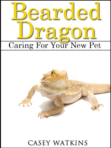 Bearded Dragon: Caring For Your New Pet (Reptile Care Guides)