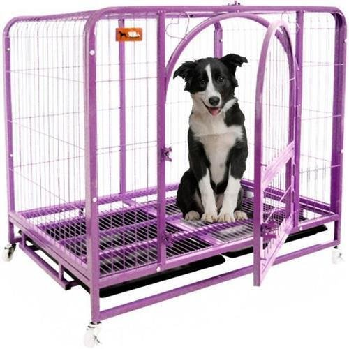 Paws Dog Cage - 7