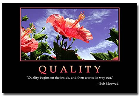 Amazon.com: 13X20Inch Quality   Motivational Quotes Art Silk