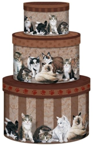 Store w/ Style Kitty City Nesting Boxes - 3 Box Set