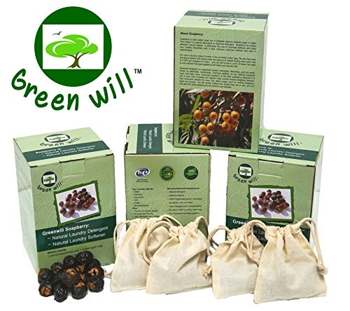 Pack of Four, 4×1-Pound Greenwill Organic Soapberry / Soap Nuts (4 Boxes, Total 4 Pounds Soapberries and 4 Wash Bags) Review