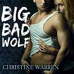 Big Bad Wolf: The Others Series | Christine Warren