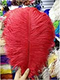 Wholesale 10/50/100pcs natural red hair ostrich feather 35-40cm / 14-16 inch feather wedding ceremony hot