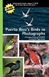 Puerto Rico s Birds in Photographs: A Complete Guide Including the Virgin Islands: With CD-ROM [With CDROM]