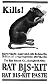 Art Rat Poisons - Best Reviews Guide