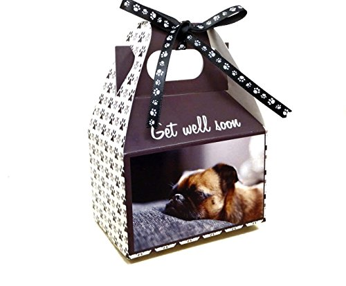 Gourmet Dog Treats - Pug Get Well Gift Box Sampler - Hand-crafted Organic Vegetarian Dog Treats - Christmas Assortment Stocking Stuffers - Made in the USA of human grade ingredients