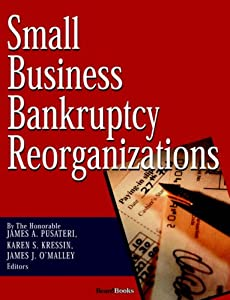 Small Business Bankruptcy Reorganizations from Beard Books