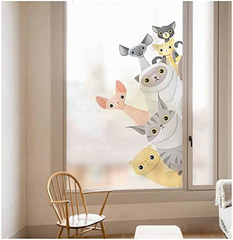 Vinilo electroestatico pandilla gatuna para cristal ventanas mamparas escaparates veterinaria tiendas animales dormitorios hiper graciosa NOVEDAD 2018 perfecta decoracion 60 x 40 cm de OPEN BUY: Amazon.es: Hogar