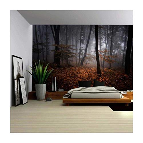 Beautiful View of an Autumn Misted Forest Wall Mural