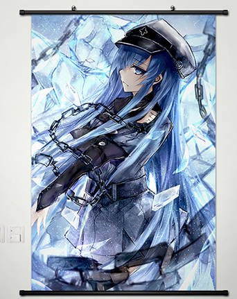 Anime Akame ga KILL Home Decor Wall Scroll Poster Fabric Painting Janpan Art Cosplay Esdeath 23.6 x 35.4 Inches-051[A]