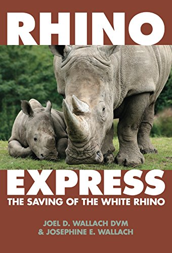 Rhino Express  The Saving Of The White Rhino