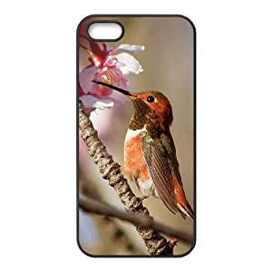 Customized case Of Hummingbird Hard Case for iPhone 5,5S by icecream design