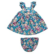 RJXDLT Baby Girls Dresses Blue Flower Printed Bowknot Skirt Dress 0-6 Months 1-Blue
