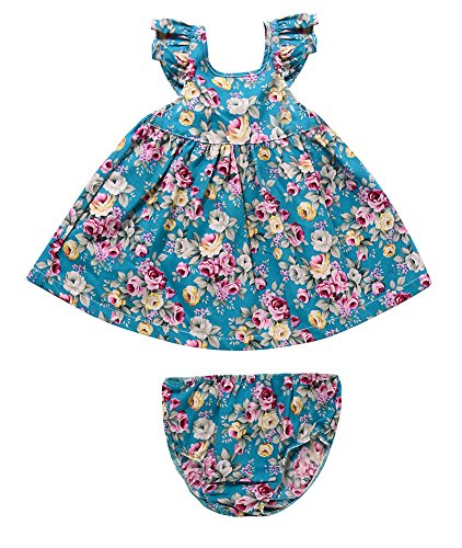 Rjxdlt Baby Girls Dresses Blue Flower Printed Bowknot Skirt Dress 6-12 Months