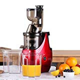 Caynel Whole Slow Masticating Upgrade Cold Press Juicer Extractor Quiet Durable Motor, 3'' Big Mouth Wide Chute with Extra Juice Bottle, Easy Cleaning Vertical Juicing Machine BPA Free