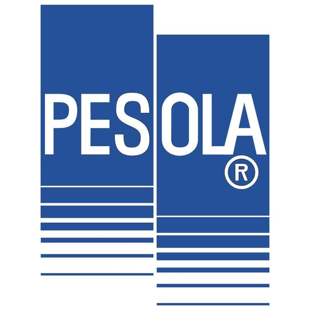 pesola 10100/Bilancia a Molla,Light 100/G